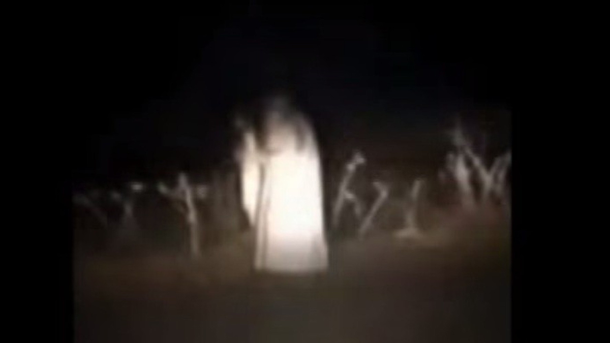 A famous Gold Rush era ghost was spotted on Highway 20 recently.