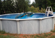 A massive dolphin masturbation ring was busted up outside the Nevada City, CA city limits by Federal officials working with the local Sheriff.