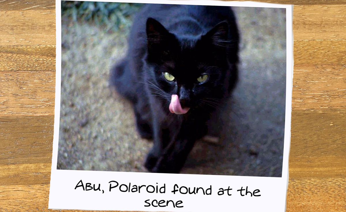 A Polaroid of Abu found at the scene obviously preparing to kill his owners.