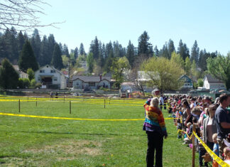 What better way to prepare children for the rigors of consumerism, than an Easter Egg hunt.